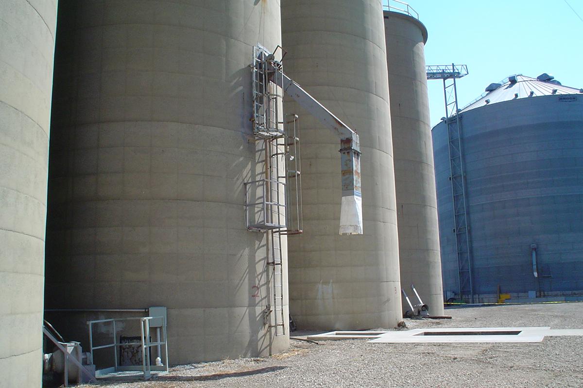 Grain 1