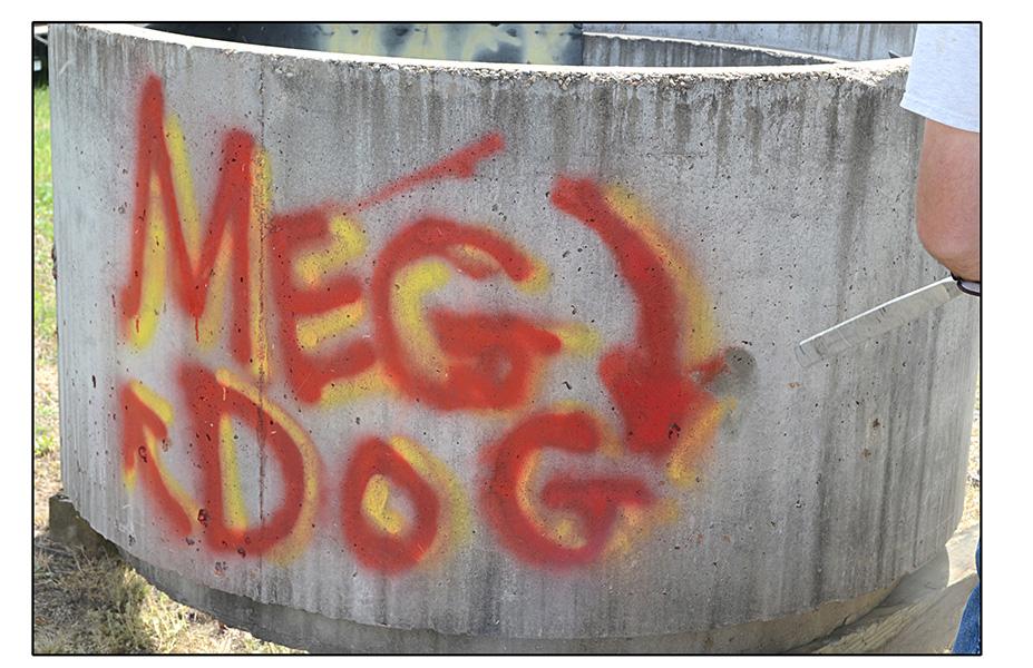 megdog_1