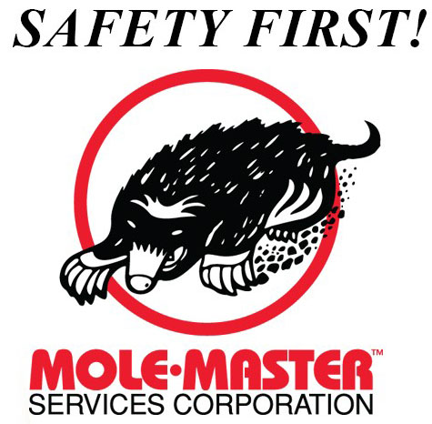 safety-first-logo